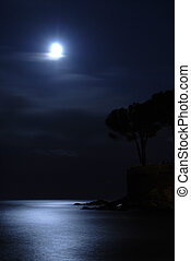 sopra, mare, luna