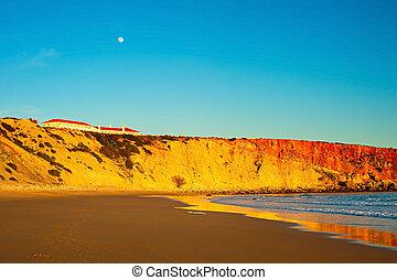 sopra, pieno, spiaggia, luna