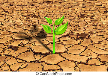 sopravvivenza, pianta