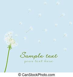sopro, cute, vetorial, dandelion