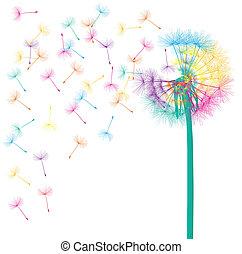 sopro, dandelion, vetorial, abstratos, fundo, conceito