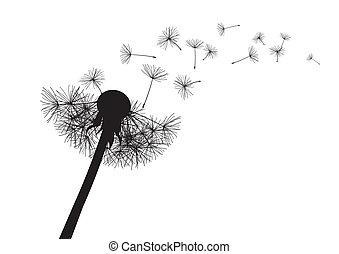 sopro, vetorial, dandelion.