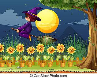 sorcière, jardin