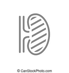 Sore human kidney line icon. Renal cysts, ureteral stones, infected organ symbol and sign illustration design. Isolated on white background
