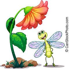 sorrindo, libélula, flor, abaixo, gigante