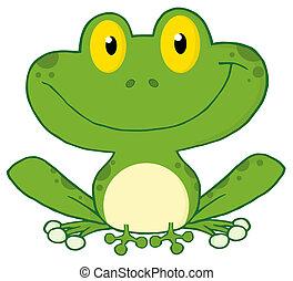 sorrindo, rã verde