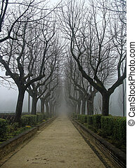 Sorrow alley in autumn in the fog. Mysterious Gothic. - ...