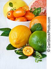 sortimento, cítrico, fruit.