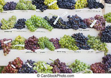 sortimento, diferente, uvas