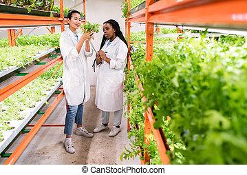 sorts, 新しい, 植物, workwear, 勉強, メスのアジア人, 生物学者, アフリカ
