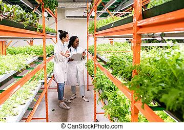 sorts, 新しい, 研究者, 植物, 勉強, 女性, intercultural, 若い, グループ