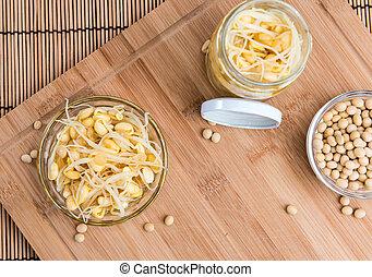 sos z fasoli sojowej, kiełbiki, (preserved)