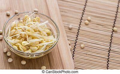 sos z fasoli sojowej, kiełbiki, utrzymany