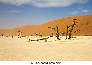 sosssusvlei, öken, namibiaer