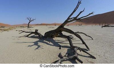 Sossusvlei in Namib desert , Namibia, Africa landscape -...