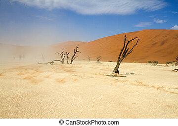 sossusvlei, namibia, desierto