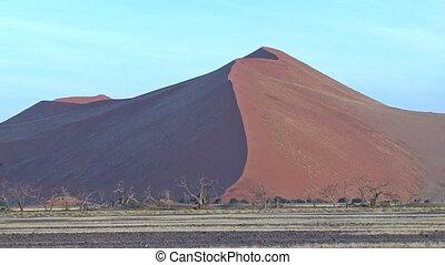 Sossusvlei sand dunes landscape with some gazelle's walking...