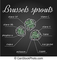 sostanze nutrienti, elenco, illustrazione, vettore, lavagna, cavoletti di bruxel, bruxelles, fondale