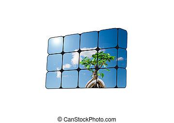 sostenibile, crescita, concept:, mano, e, cubi