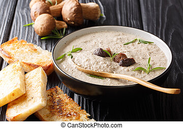 soup puree forest boletus mushrooms close up in a bowl served with toast. horizontal