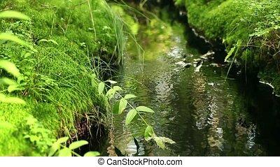 source pure water sunlit, loop