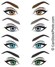 sourcils, yeux, ensemble, réaliste, vecteur, femme, dessin animé