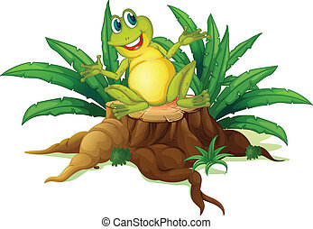 sourire, bois, au-dessus, grenouille