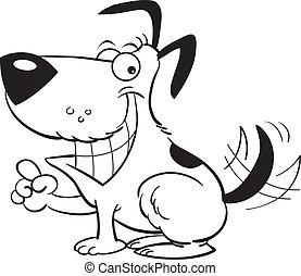 sourire, chien, pointage