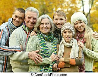 sourire, famille, délassant