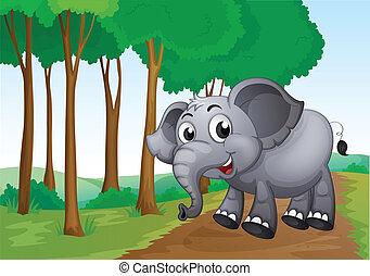 sourire, forêt, éléphant