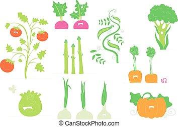 sourire, légumes, collection