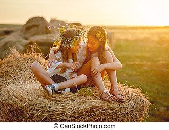 sourire, soeurs, agréable, meules foin