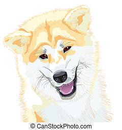 sourires, croquis, inu, japonaise, chien, akita, vecteur