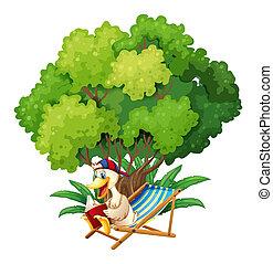 sous, arbre, lecture, canard