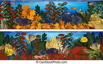 sous-marin, algues, fish, illustration, etoile mer, exotique, vecteur, bannières, horizontal