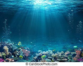 sous-marin, fond mer, -, soleil, scène, récif, exotique