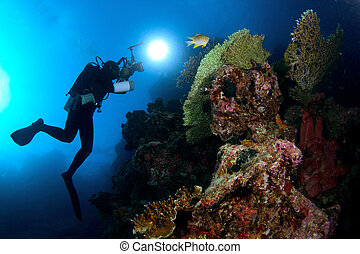 sous-marin, sceneries