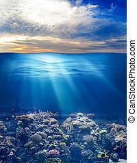 sous-marin, vie, ciel,  océan, Coucher soleil, mer, ou