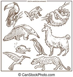 South American animals and birds vector sketch - South...