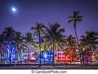 MIAMI, FLORIDA - JANUARY 6, 2014: Palm trees line Ocean Drive. The raod is the main thoroughfare through South Beach.