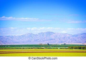 South California Farmlands