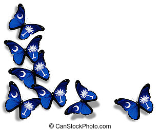 South Carolina flag butterflies, isolated on white ...
