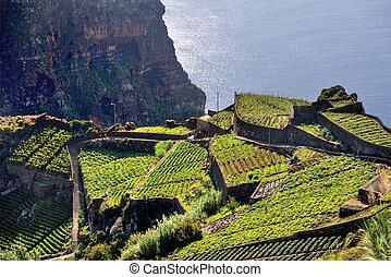 South coast of Madeira island - Portugal