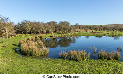 South Downs Natonal park dew pond