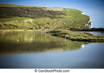 South Downs reflected