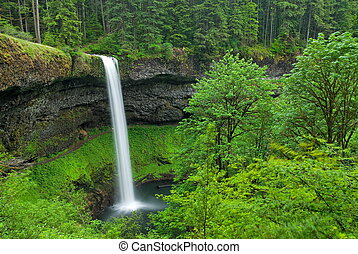 South Falls, Oregon - Strong waterfall and lush green ...