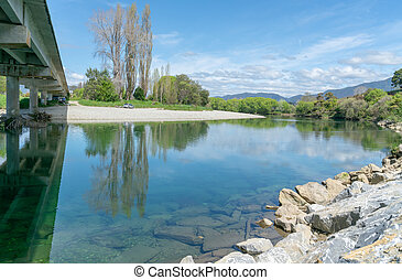 South Island River - Lime green spring growth of willow...