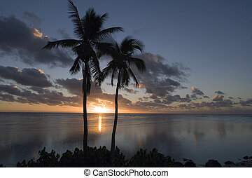 South Pacific sunset - Cook Islands - South Pacific
