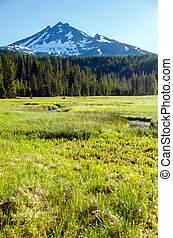 South Sister viewed from a lush green meadow in Central Oregon