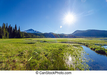 South Sister Wide Angle - View of a meadow and South Sister...
